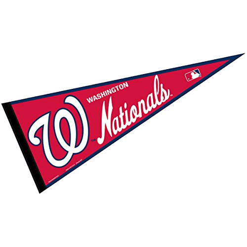 (WinCraft Washington Nationals MLB Large Pennant)