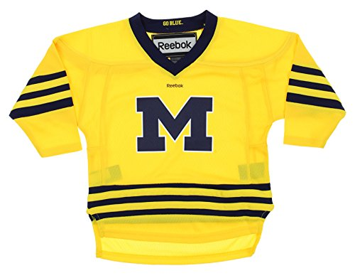 Michigan Wolverines NCAA Little Boys Toddlers Replica Hockey Jersey, Yellow