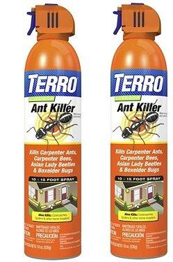 TERRO Outdoor Aerosol - 19 oz. 1700 (2 PACK) by Terro