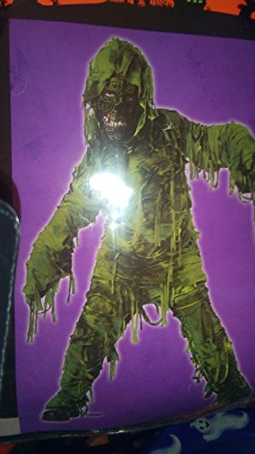 Swamp Creature Costumes (Swamp creature costume size large for ages 8 through 14 include short attached his pants and mask)