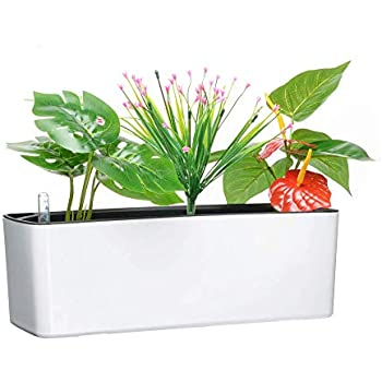 Amazon Com Elongated Self Watering Planter Pots Window