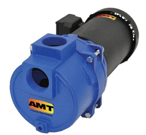 460v Pump - AMT Pump 316A-95 Sewage & Trash Pump, Cast Iron, 3 HP, 3 Phase, 230-460V, Curve A, 2