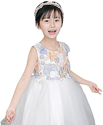 67848333a409 Amazon.com: Feitong Kids Girls Flower Dress Baby Girl Butterfly Birthday  Party Dresses Children Fancy Princess Ball Gown Wedding Clothes: Baby