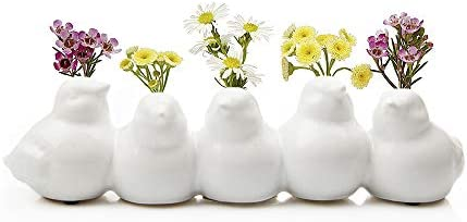 Chive – Sisken Unique Ceramic Bird Vase, Small Bud Vase for Short Flowers, Decorative Floral Vase for Home D cor, Flower Arranging, Low Laying Vase for Tabletop, 5 Interconnected Birds White