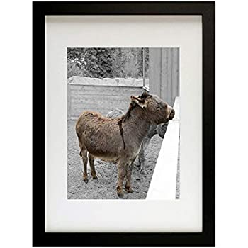 Golden State Art, 12x16 Picture Frame - Matted to Fit Pictures 8.5x11 Inches or 12x16 Without Mat (Black)