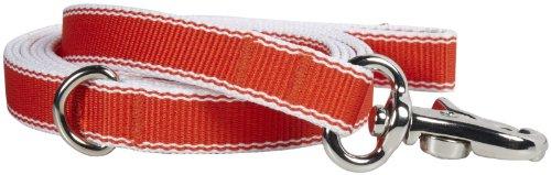 Waggo Stripe Hype Leash - Cherry - Medium - 6 ft x 5/8 inch