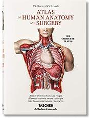 Bourgery. Atlas De Anatomía Humana Y Cirugía (Bibliotheca Universalis)