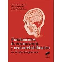 Fundamentos de neurociencia y neurorrehabilitación en Terapia Ocupacional