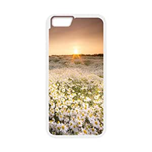 """T-TGL(RQ) Personalized Daisy Pattern Protective Hard Case for Iphone6 Plus 5.5"""""""