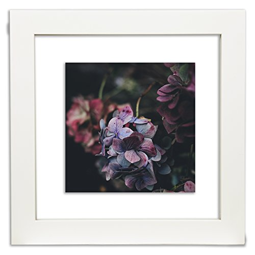 Amazon Com Gallery Solutions 12x12 White Float Frame For