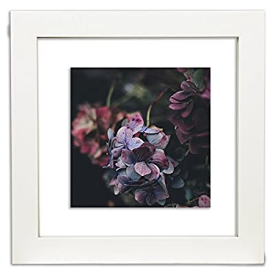 Gallery Solutions 12x12 White Float Frame For Floating Display of 10x10 Image - Wide 1.5 inch white frame profile Two panes of glass to insert photos or art between for floating effect on your wall Glass measures 12 inches x 12 inches, perfect for displaying a 10 inch x 10 inch image or smaller - picture-frames, bedroom-decor, bedroom - 417drxeTr8L. SS400  -