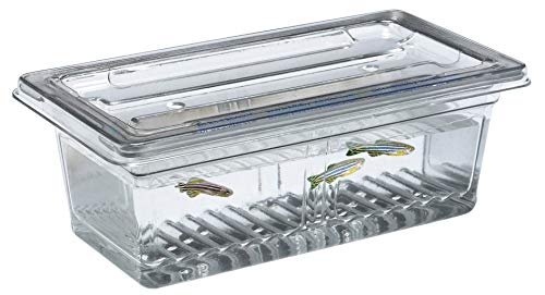 143354-0000 - Zebra Fish Tank Complete - Dynalon Dura-Cross Zebra Fish Breeding Tank - - 0000 Zebra