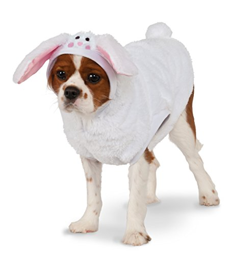 Bunny Hoodie for Pet, Medium (Bunny Costume For Dogs)