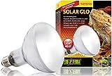 Exo Terra Solar-Glo High Intensity Self-Ballasted Uv/Heat Mercury Vapor Lamp, 125-Watt thumbnail