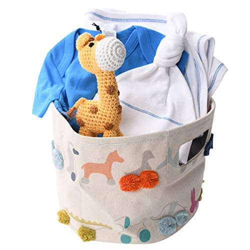 Blue Organic Gift Basket for Baby Boy with Giraffe Toy ()