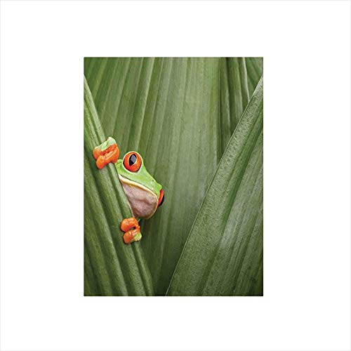 - Ylljy00 Decorative Privacy Window Film/Red Eyed Tree Frog Crowling Between Leaves Tropical Jungle Rainforest Night Art/No-Glue Self Static Cling for Home Bedroom Bathroom Kitchen Office Decor Green