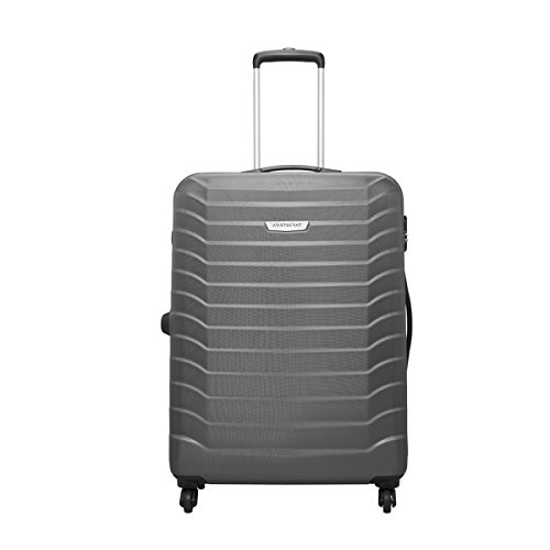 Aristocrat Juke Polycarbonate 75 cms Grey Hard Sided Suitcase (JUKE75TMGP)