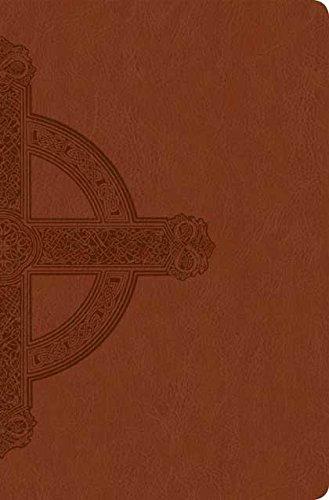 Buy large print bible nlt