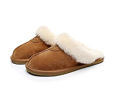 UGG 1978AUS Slippers (5, Chestnut)