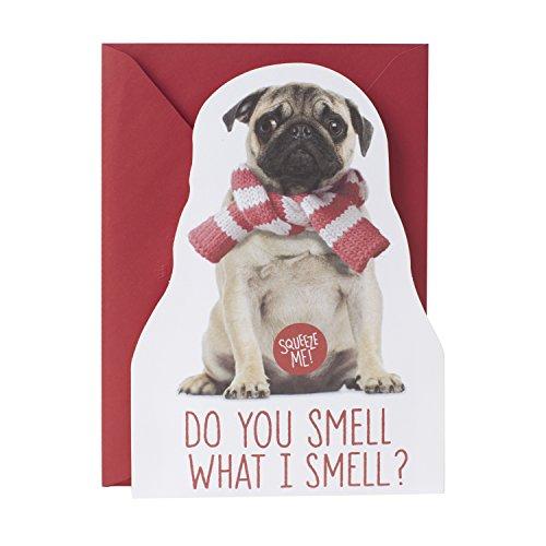 Hallmark Christmas Greeting Song Card (Pug Tooter)