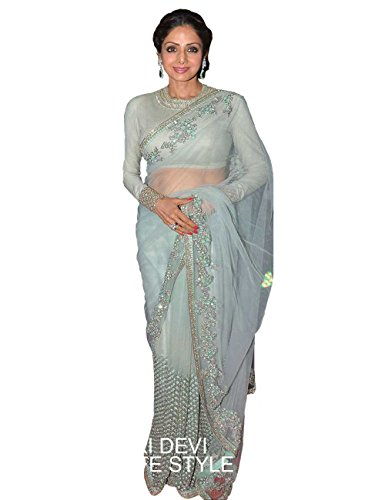 Sridevi Sky Blue Net Saree With Raw Silk Blouse
