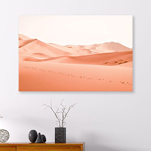 Desert with Camel Foot