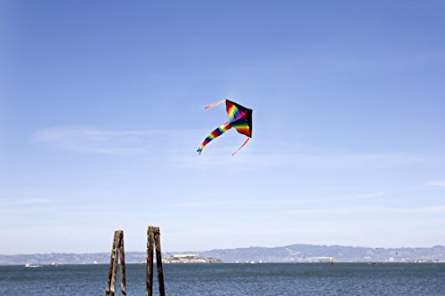 Large Delta Kite/Rainbow Kite (200' of Line) - Easy to Assemble, Launch, Fly - Premium Quality, One of the Best Kites for Kids/Kites for Adults - Great Beginner Kite Impresa(TM) by Impresa Products (Image #4)