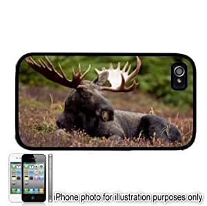 Bull Moose Forest Photo Apple iPhone 4 4S Case Cover Black