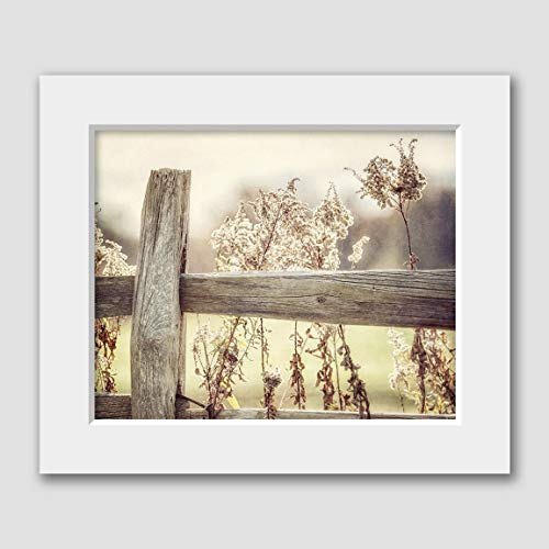 Farmhouse Home Decor Matted 8x10 Print (fits 11x14 Frame) Rustic Fence with Golden Field Landscape. -