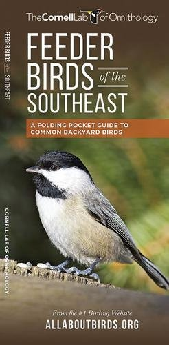 Feeder Birds of the Southeast: A Folding Pocket Guide to Common Backyard Birds (All About Birds Pocket Guide Series)