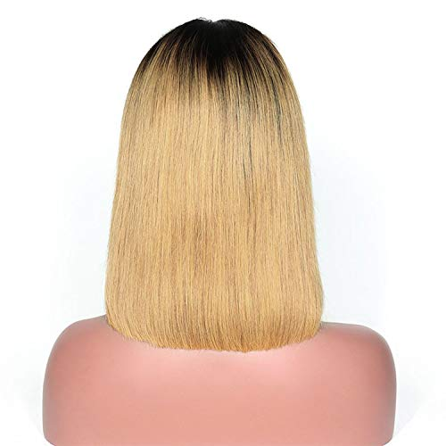 Short Human Hair Bob Wigs Roots Remy Lace Front Human Hair Wigs Plucked Baby Hair,T1B/27,14inches,150% ()