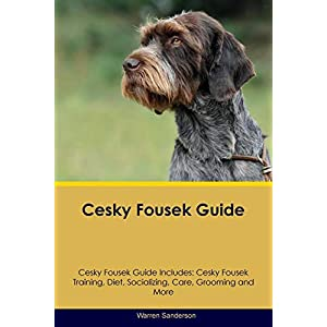 Cesky Fousek Guide Cesky Fousek Guide Includes: Cesky Fousek Training, Diet, Socializing, Care, Grooming, Breeding and More 37