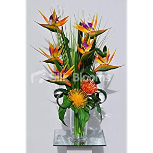 Silk Blooms Ltd Artificial Orange Bird of Paradise and Pincushion Protea Floral Arrangement w/Leaves and Grass 117