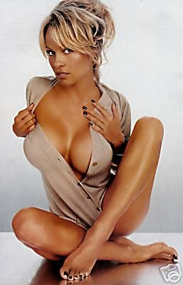 Pamela Anderson 24X36 Poster - Very Hot - New! - Buy Me! #02