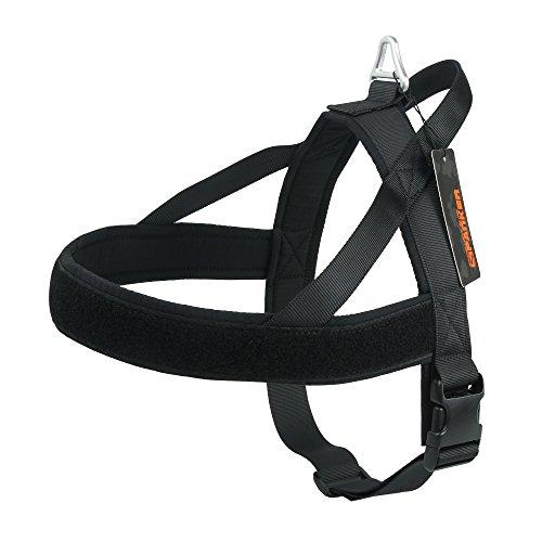 EXCELLENT ELITE SPANKER No-Pull Dog Harness Soft Padded Adjustable Nylon Pet Harness for Training Running(BLK-M) ()