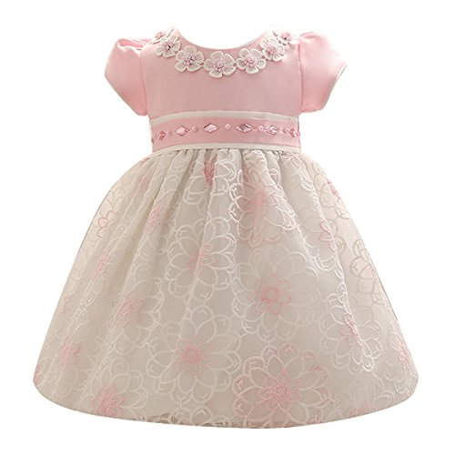 Nosii Baby Girls Short Sleeeve Bridesmaid Wedding Dress Princess Party Dreses Pink 13-24 Month