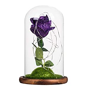 Enchanted Rose, Silk Forever Rose, Artificial Flower LED Night Light with Glass Dome on Wooden Base Valentine's Day Anniversary Birthday Gift (Purple) 103