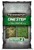 PENNINGTON SEED 100522284 8.3 lb Tall Fescue Blend Ne Step Complete Smart Seed