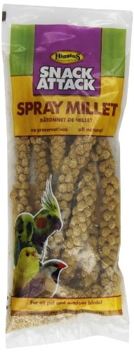 Spray Millet Gold (HIGGINS 466003 6 Count Higg Spray Millet for Birds)