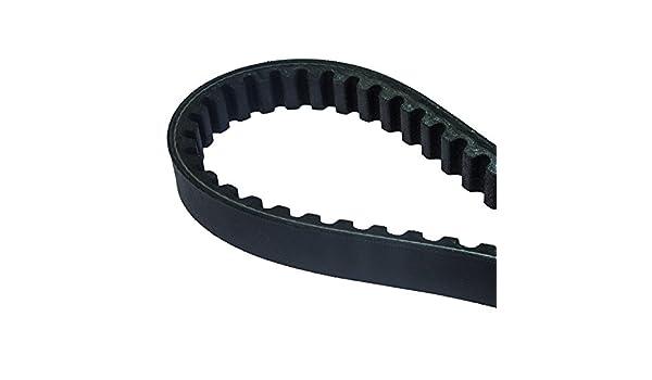 Dayco 8178/K Power Plus reforzado con Kevlar Cintur/ón