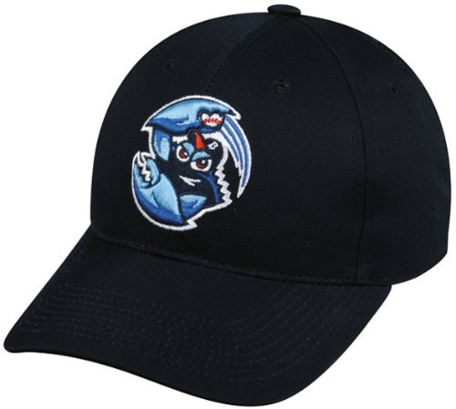 MiLB Minor League YOUTH LAKEWOOD BLUECLAWS Navy Blue Hat Cap Adjustable Velcro TWILL