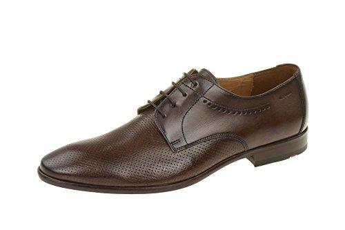 LLOYD17-235-17 - zapatos con cordones Hombre marrón