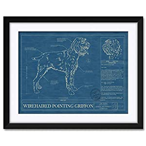 "Wirehaired Pointing Griffon Professionally Framed & Matted Hand-Drawn Dog Blueprint by Robert Redding. Print Size: 17"" x 25"" Framed Art Size: 24"" x 32"" 1"