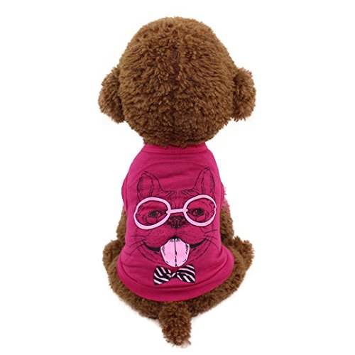 Price comparison product image Haoricu Pet Clothing,  Fashion Cut Carton Printed Puppy Cat Tee Vest For Small Dogs T shirt Pet Costume (S,  A)
