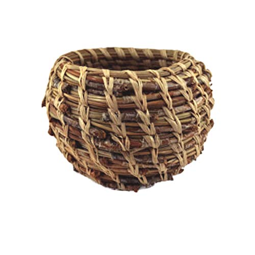 The Complete Pine Needle Basket Kit (makes one 4in. - 6in. ()