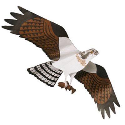 Jackite Osprey Kite by Jackite, Inc