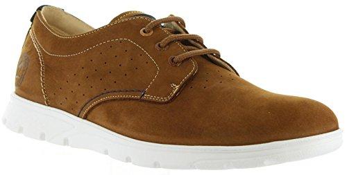 PANAMA JACK Zapatos de Hombre Domani C12 Nobuck Cuero