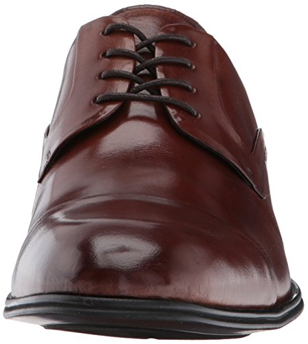 York Oxford New Cole Kenneth 102812 Cognac Design Men's wzA4ZCHq