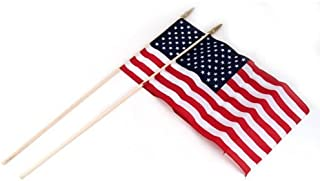 """product image for Flag Zone 100064118 American Hand Flag, 12"""" x 18"""", Natural"""