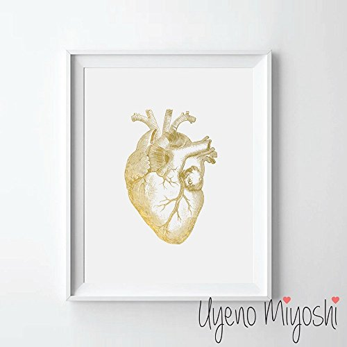 Art Heart Human (Human Heart II Gold Foil Art Print Human Heart Anatomy Gold Print Heart Anatomy Gold Wall Art Decor 08 x 10)